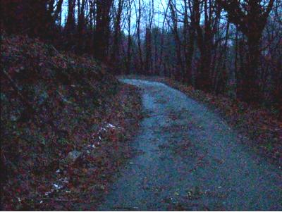 landslide_video1